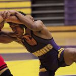 Feuerstein wins sectional title
