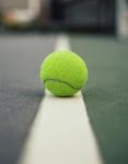 Boys Tennis Sweeps Juan Diego