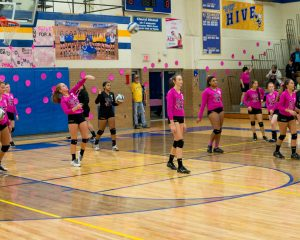 Volleyball Dig Pink Game