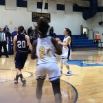 Lady Wolverines fall to the Lady Hornets