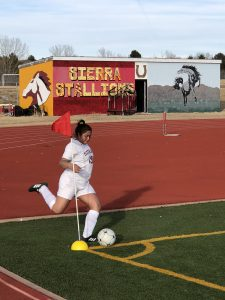 Photo Gallery: Girls Soccer vs. James Irwin 3/8/2018