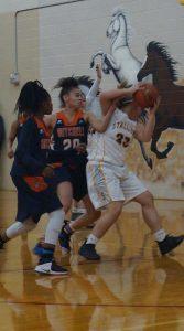 Photo Gallery: Girls Basketball vs. Mitchell 2/8/2019