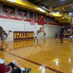 Photo Gallery: Volleyball vs. TCA