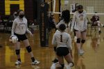 Photo Gallery: C Squad Volleyball vs. Sand Creek
