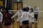 Photo Gallery: JV Volleyball vs. Sand Creek