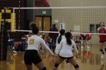 Photo Gallery: JV Volleyball vs. Elizabeth