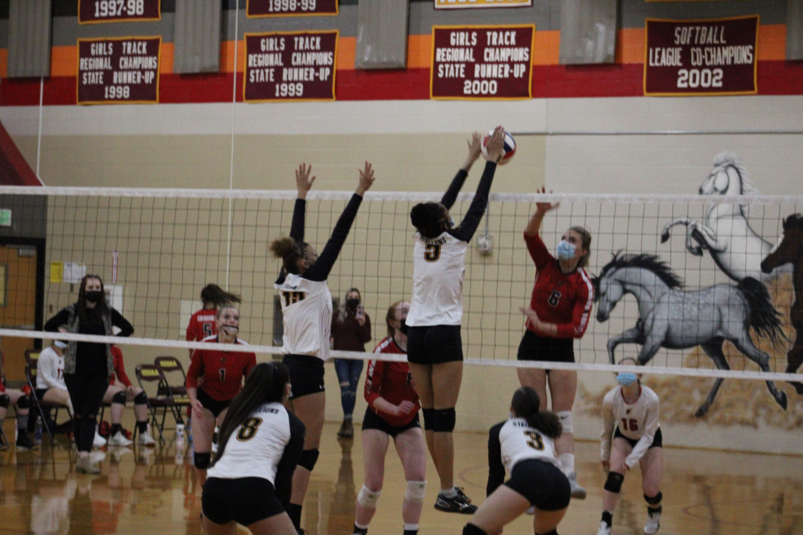 Photo Gallery: Varsity Volleyball vs. Elizabeth