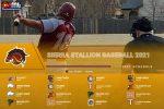 Stallion Baseball Schedule 2021