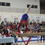 West Noble Gymnastics Clinic Coming Up