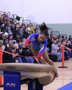 Gymnastics Sectional 3-1-20