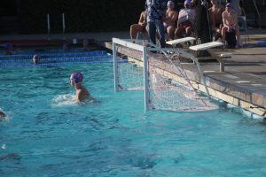Water Polo_Varsity_Boys_2016