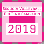 Help Sequoia Girls Volleyball Fight Breast Cancer!
