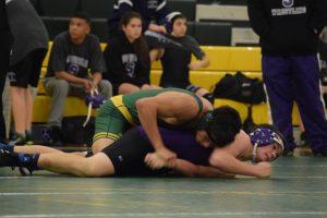 Wrestling VS Sequoia