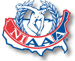 2020 NIAAA Scholarship Opportunity for Senior Athletes