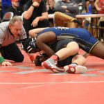 Garfield Bulldog Wrestling Pictures