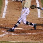 Boys Varsity Baseball beats D W Daniel 12 – 2