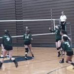 Volleyball falls to Chemics