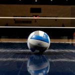 Volleyball Sweeps Alpena