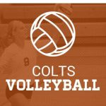 Div. III Sectional Volleyball Tournament Information