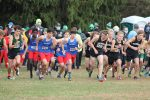 Boys Cross Country IHSAA Regional Meet (Oct 17)