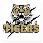 Info – V Baseball at Lebanon