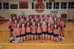 Volleyball '20