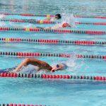 DIII AIA State Swim Preview
