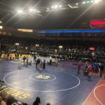 AIA State Wrestling Results