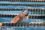 Knights Swim and Dive Camp Starts Monday
