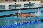 Knight Swimmers Looking Strong Heading into Wolves Qualifier