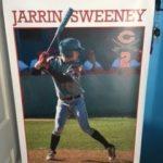 Baseball Senior Posters