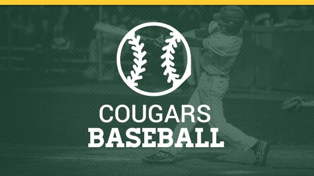 Blackhawk Cougars Baseball – WPIAL Championship Media Release