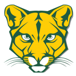 Blackhawk Cougars Football Media Release – WPIAL Playoffs vs West Mifflin