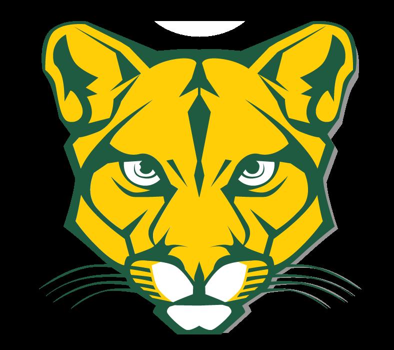 Blackhawk Cougars Basketball – WPIAL Girls Playoffs Media Release
