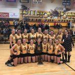 Pellston High School Girls Varsity Volleyball beat Harbor Light Christian High School 3-0
