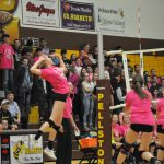 Bricker and Robinson named to PNR VB Dream Team