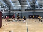 Hornets Finish 2-1 in Charlevoix Quad