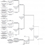 Girls Section Softball Brackets