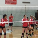 Volleyball Cruises at Home