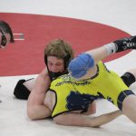 MHSAA Individual Wrestling Districts