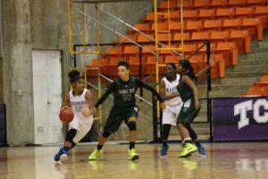 Girls Basketball vs LD Bell
