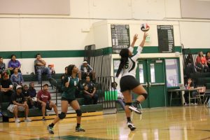 Volleyball vs Northside