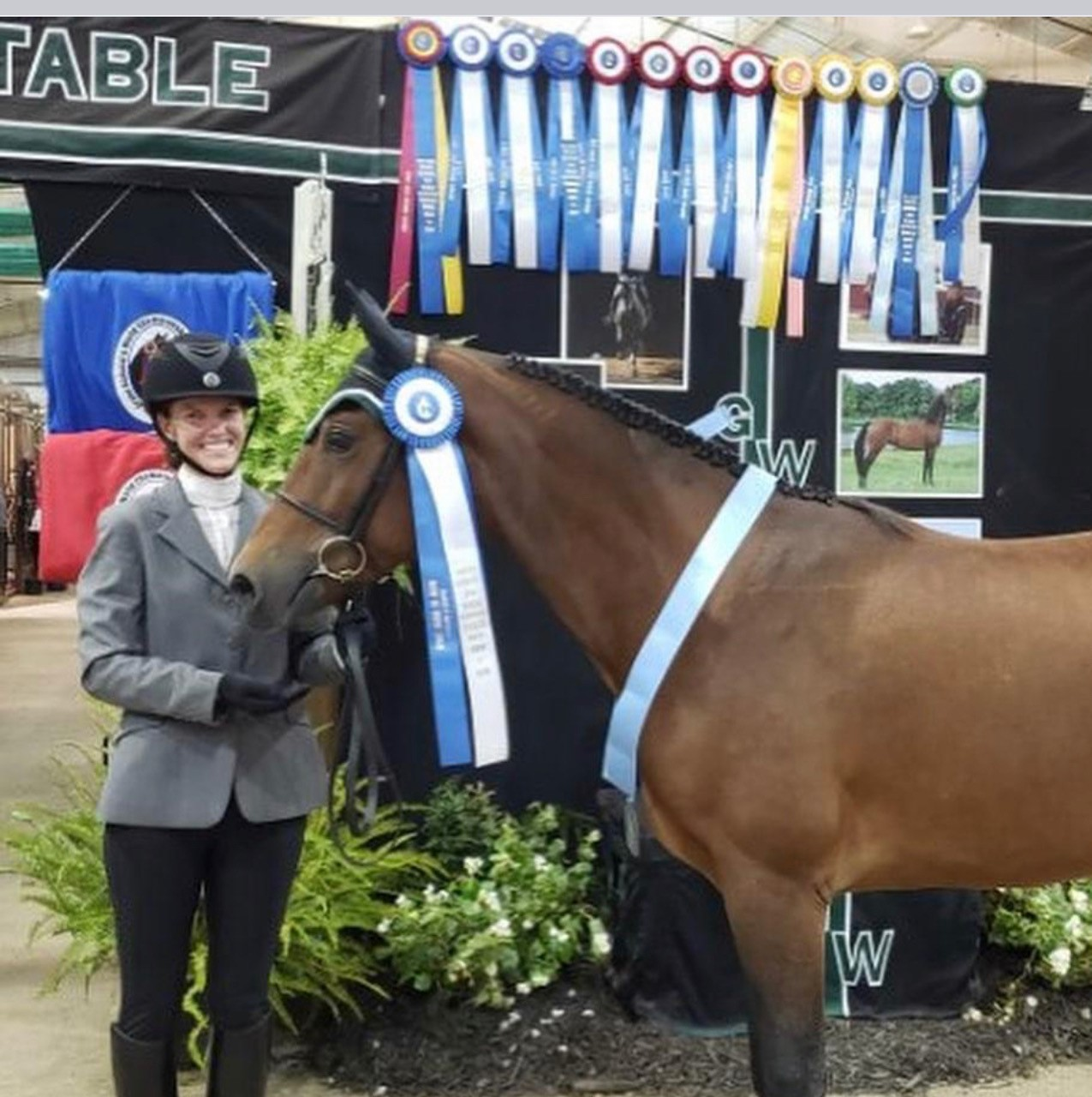 What is a teacher to do during a pandemic besides figuring out classes, attendance, and grades? How about finding time to become a High Point World Champion High-Point Sport Horse In-Hand!?!?!