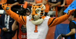 Collegiate/Pro Tigers