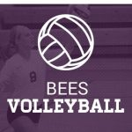 Volleyball Live Stream vs Woods Cross