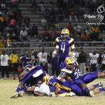 Tigers Beat Purple Knights
