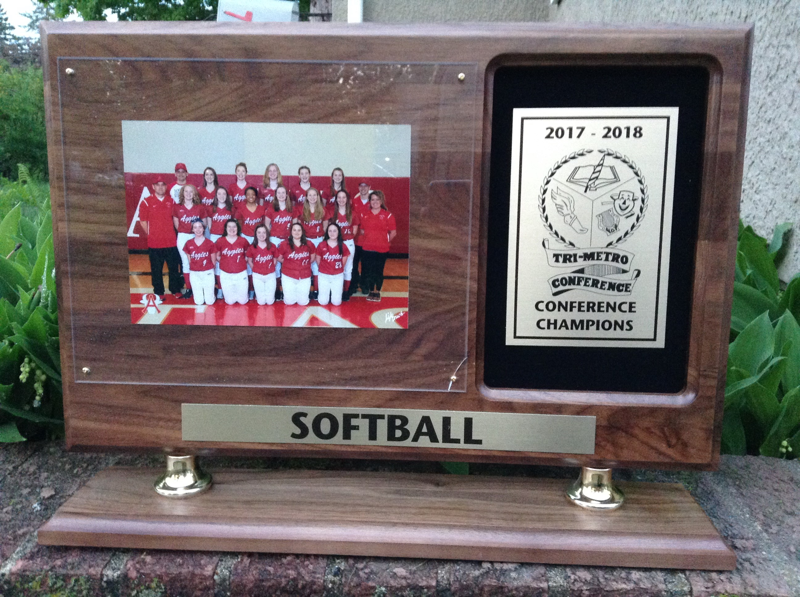 Softball receives #1 seed in Section 4AA Playoffs