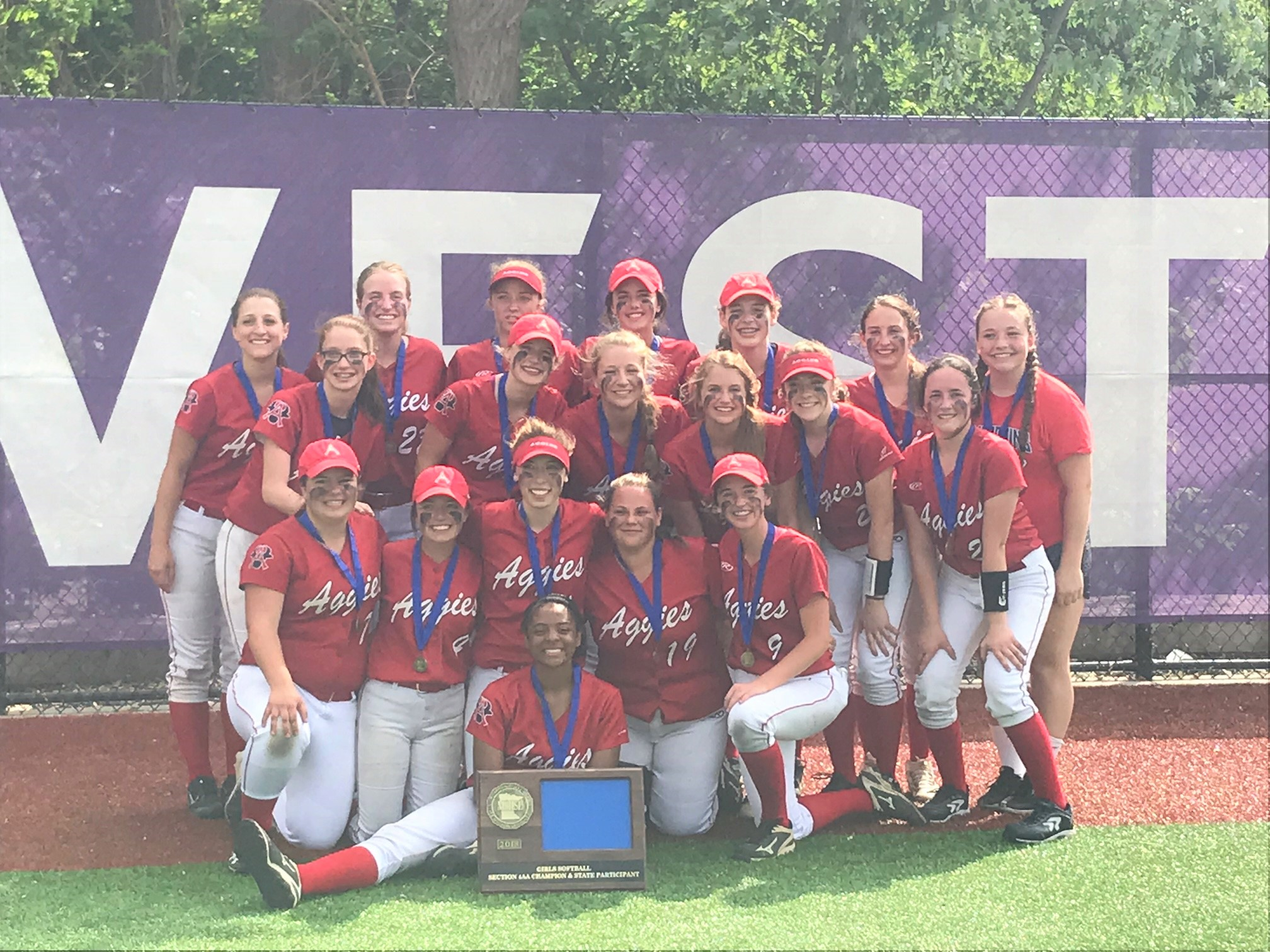 Softball to play Annandale Thursday in Opening Round of State Tournament