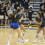 Wildcats Fall To Warriors In Lower State Final