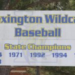Lexington Varsity Baseball vs Summerville, Naturechem, Game 3